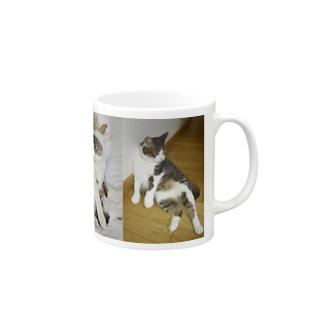 うちの猫 マグカップ