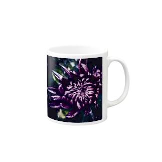 小菊咲きました Mugs