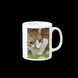 ねこまる広場のぽてとさんヾ(◍'౪`◍)ノ゙ Mugs