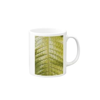 植物2 Mug