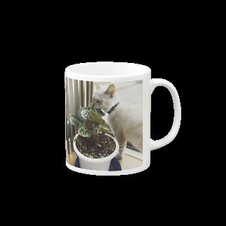 SHOP_KAGENEKOの草パク猫 Mugs