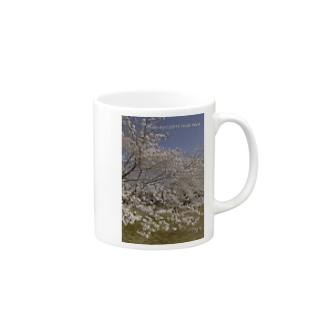 満開の桜 Mugs