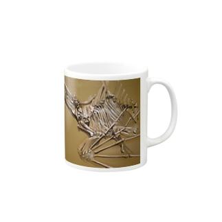 Aenigmatherium Mugs