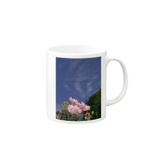 芙蓉 DATA_P_133 Confederate Rose ハスの花の古名 Mugs