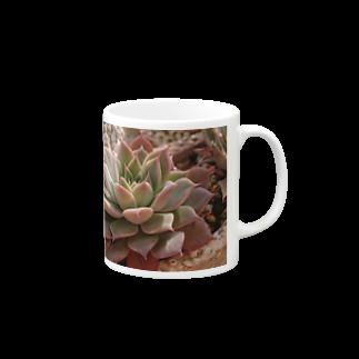 🌵たにくりーむ🍦の多肉植物 Mugs