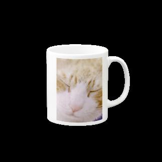 昭和~平成~令和系のりさぴん@の保護猫 セサミくん Mugs