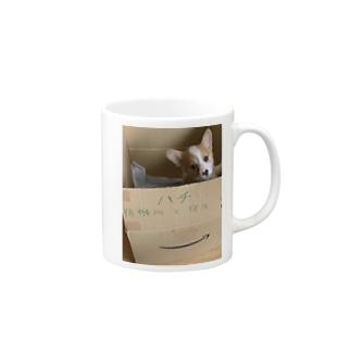 ハチっ子 Mugs