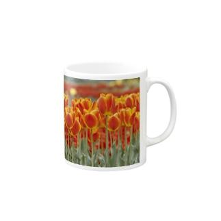 チューリップ Mugs