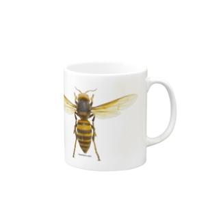 オオスズメバチ女王 Mugs