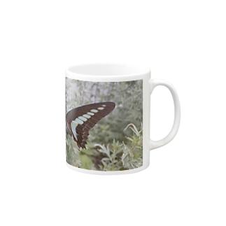 揚羽蝶 Mugs