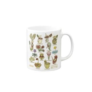食虫植物図鑑 Mugs