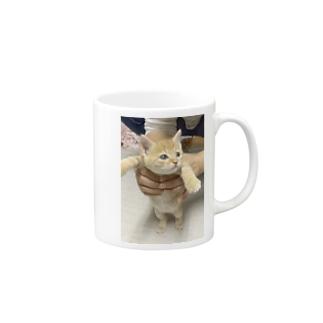 Soraたん Mugs
