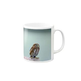 フクロウ Mugs