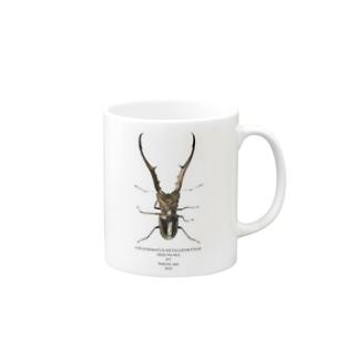 メタリフェルホソアカクワガタ(PL16MF5001) Mugs