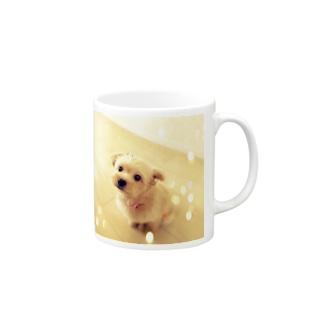 キラキラポメプーのココ Mugs