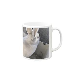 うさぎ🐰 Mugs