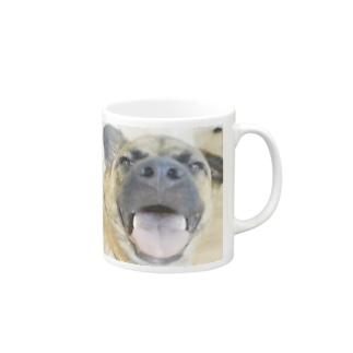 スッポン犬 Mugs