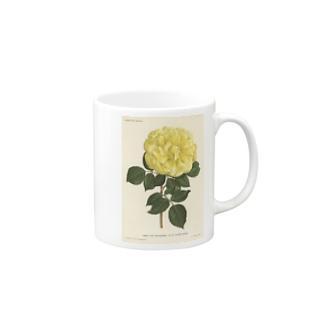 ベルギーのバラ マグカップ