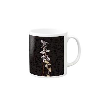植物の写真2 マグカップ