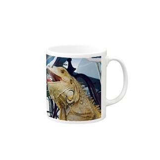 イグアナ Mugs