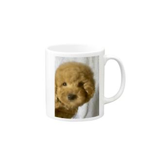 トイプードル Mugs