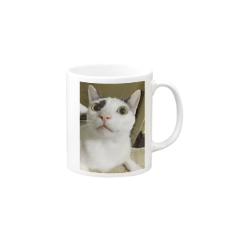 nyangonekodaの信ちゃんマグカップ Mugs