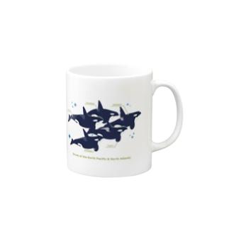 Type:Orcasマグカップ Mugs