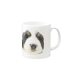 バーニーズマウンテンドッグA 子犬 マグカップ