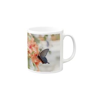 カラスアゲハ マグカップ