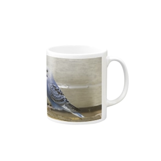 セキセイ Mugs