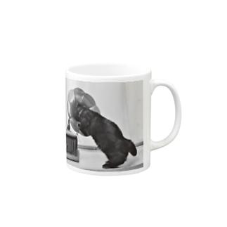 安定感企画 猫編No.1 キング Mugs