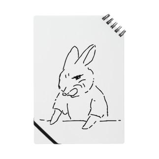 うさぎむすこ(黒2) Notes