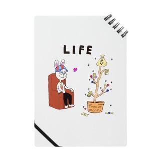 LIFE-MONEY Notes
