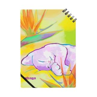 花と猫 Notes
