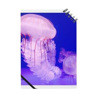 海のイラクサ Notes
