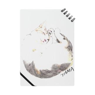 TAMA ノート