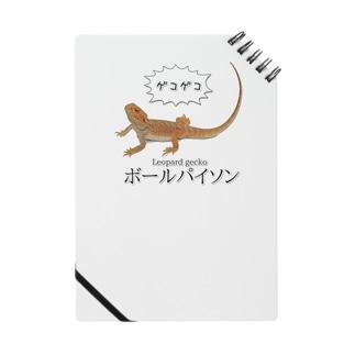 滅裂爬虫類 ノート