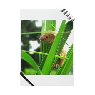 小さい小さいネズミ Notebook