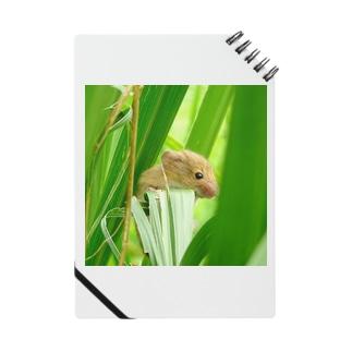 小さな小さなネズミ Notebook