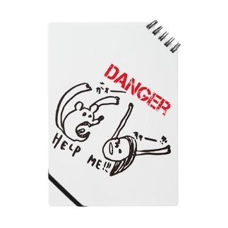 DANGER Notes