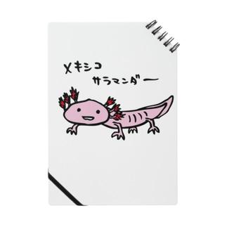 n_airのウーパー・大 Notes