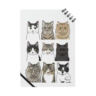 河原の野良猫たち1 Notes