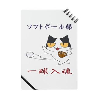 ソフトボール Notes
