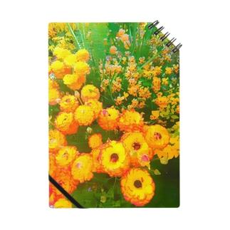オレンジの花 Notes