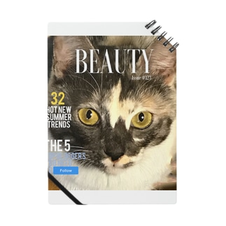 beautyful cat Notes