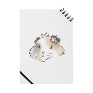 モカちゃん Notes
