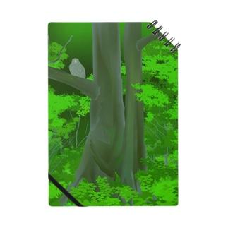 シマフクロウの森 Notes