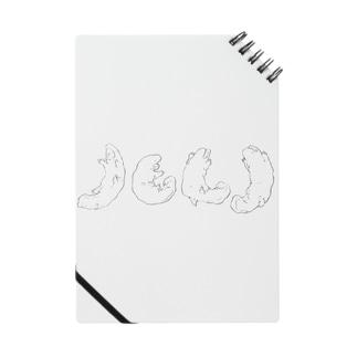 ホワイトサラマンダ Notes