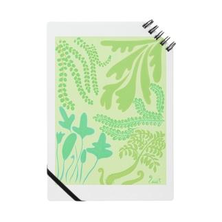 シダマミレ Notes