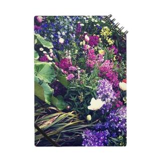 オフェーリアの池の傍らに咲く花 Notes